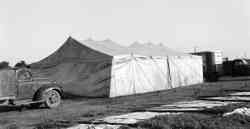 Horse tent Kelly Miller Circus 1945