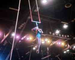 "Rosa Gibbs performing ""Iron Jaw"" fron the trapeze"