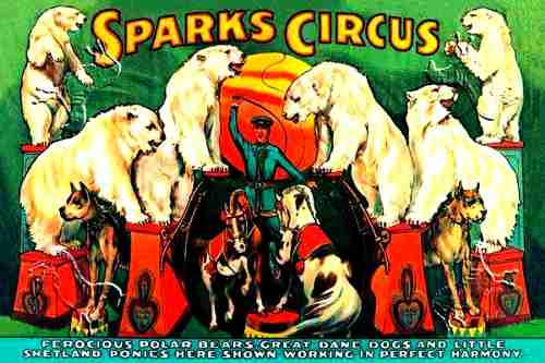 Sparks Circus